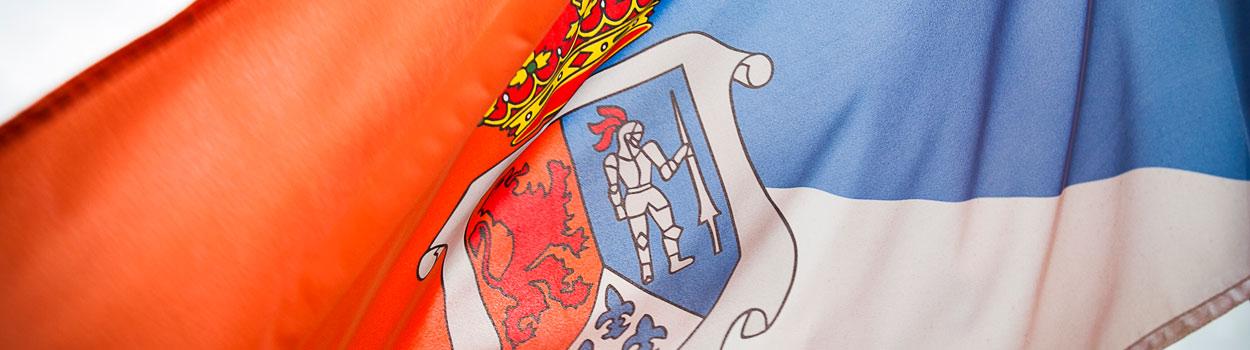 Bandera de Solórzano